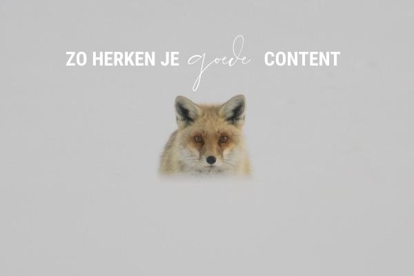Hoe herken je goede content?